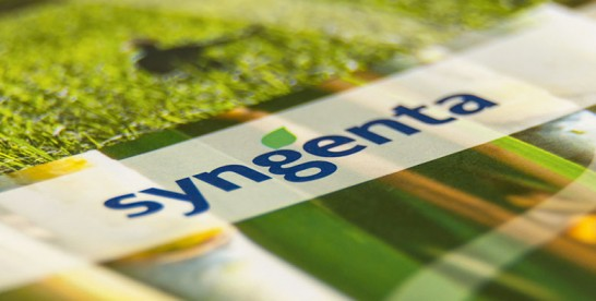 Programa de Estágio Syngenta 2015 – Área de Marketing