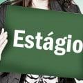 Estagio-1-