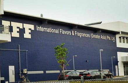 IFF realiza Programa de Estágio na área de Marketing