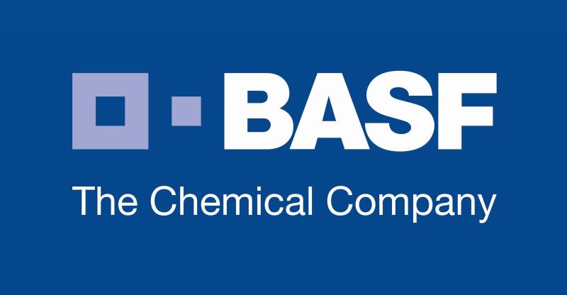 Programa de Trainee BASF 2019